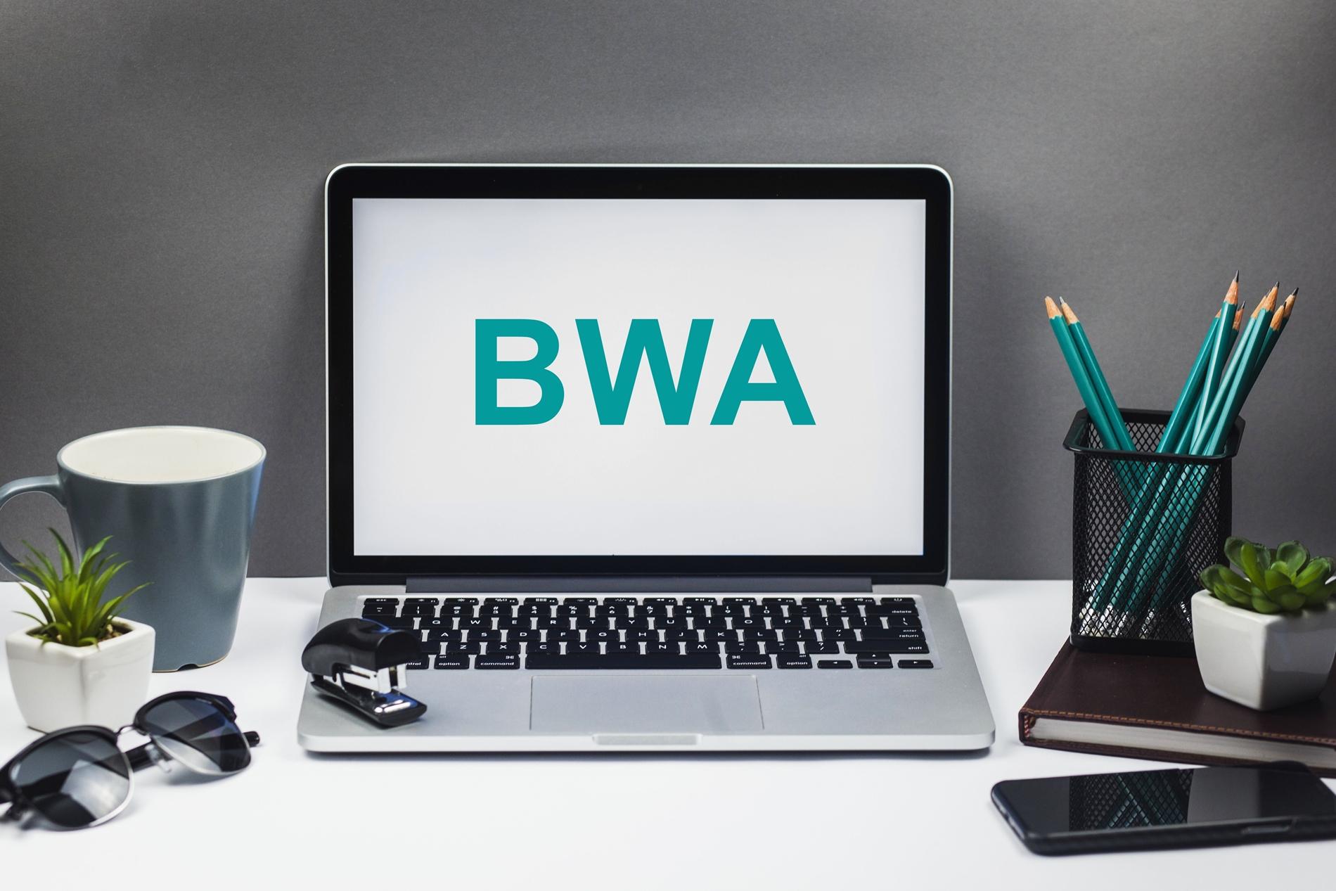 raportowanie finansowe bwa